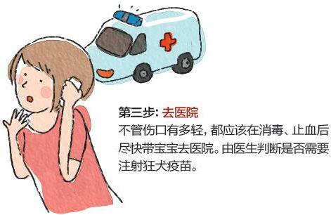 宝宝被动物咬伤的急救方法
